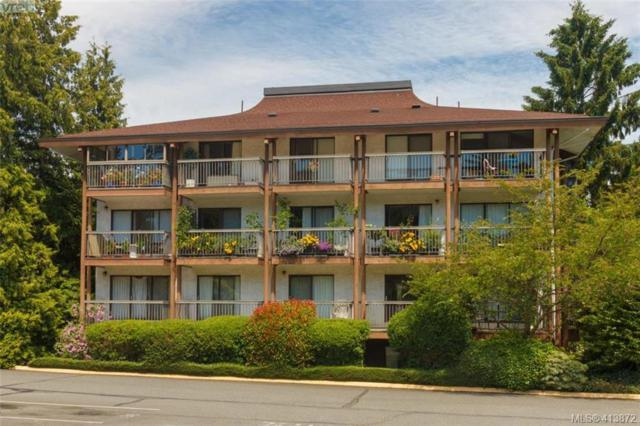 1005 Mckenzie Ave #419, Victoria, BC V8X 4A9 (MLS #413872) :: Day Team Realty