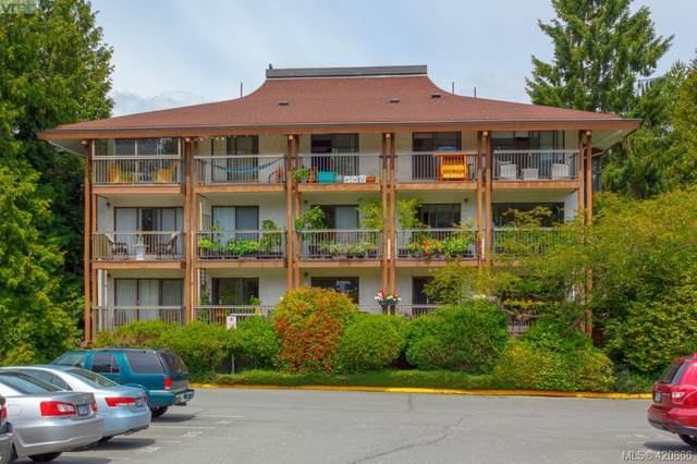 1005 Mckenzie Ave #411, Victoria, BC V8X 2H7 (MLS #420866) :: Day Team Realty