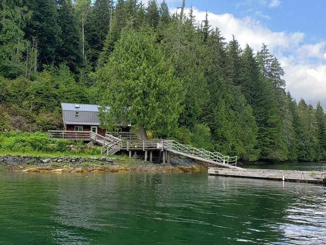 LT I Cheeyah Island, Port Alberni, BC  (MLS #841243) :: Call Victoria Home