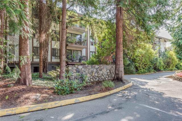 1009 Mckenzie Ave #415, Saanich, BC V8X 4B1 (MLS #855248) :: Day Team Realty