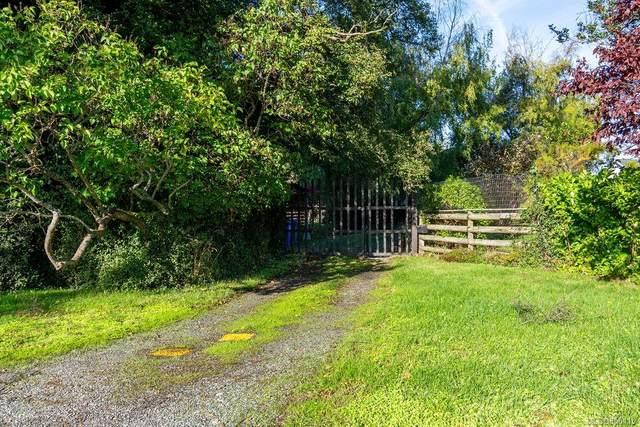 2072 Hampshire Rd, Oak Bay, BC V8R 5V1 (MLS #858115) :: Call Victoria Home