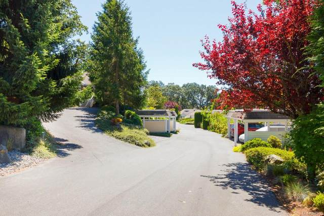1507 Queensbury Ave #3665, Saanich, BC V8P 5M5 (MLS #866565) :: Day Team Realty