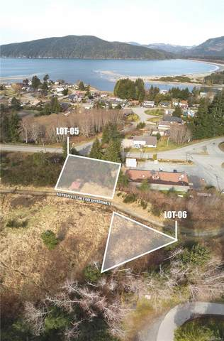 Lot 5 Beachview Rise, Port Renfrew, BC V0S 0K1 (MLS #870213) :: Day Team Realty