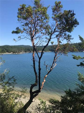 Lot 2 Pirates Rd, Pender Island, BC V0N 2M2 (MLS #872089) :: Day Team Realty