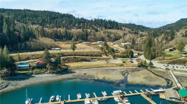 17031 Amber Lane, Campbell River, BC V9H 1R7 (MLS #873261) :: Call Victoria Home