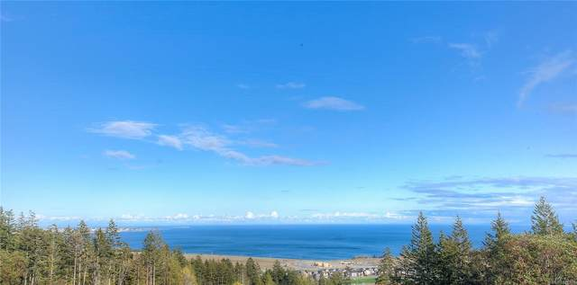 539 Delora Dr #104, Colwood, BC V9C 0M2 (MLS #876938) :: Day Team Realty