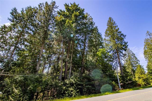 4741 Ketch Rd, Pender Island, BC V0N 2M2 (MLS #878592) :: Pinnacle Homes Group
