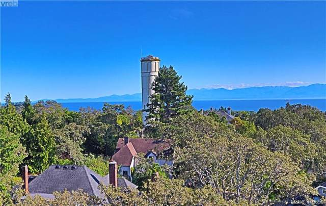 1033 Belmont Ave #602, Victoria, BC V8S 3T4 (MLS #416659) :: Day Team Realty
