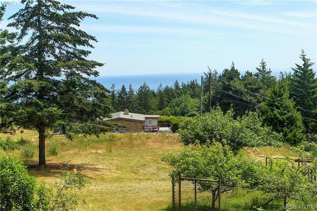 5046 Rocky Point Rd, Victoria, BC V9C 4G4 (MLS #427785) :: Day Team Realty