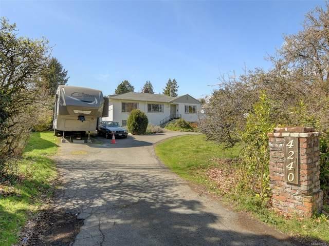 4240 Shelbourne St, Saanich, BC V8N 3E9 (MLS #871371) :: Call Victoria Home