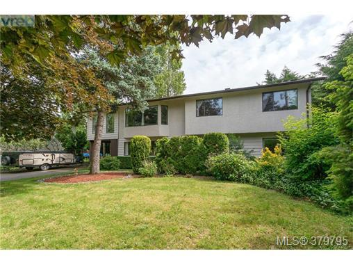 7115 Wallace Dr, Central Saanich, BC V8M 1G9 (MLS #379795) :: Day Team Realtors