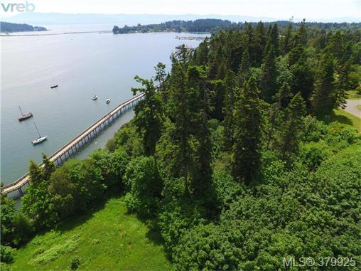 LOT 11 Horne Rd, Sooke, BC V9Z 1H9 (MLS #379925) :: Day Team Realtors