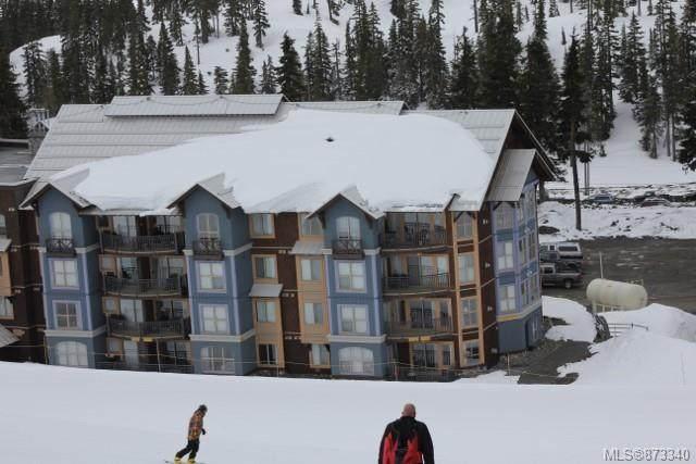 1280 Alpine Rd #205, Courtenay, BC V9J 1L0 (MLS #873340) :: Call Victoria Home