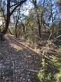 42045 Crooked Stick Drive - Photo 15