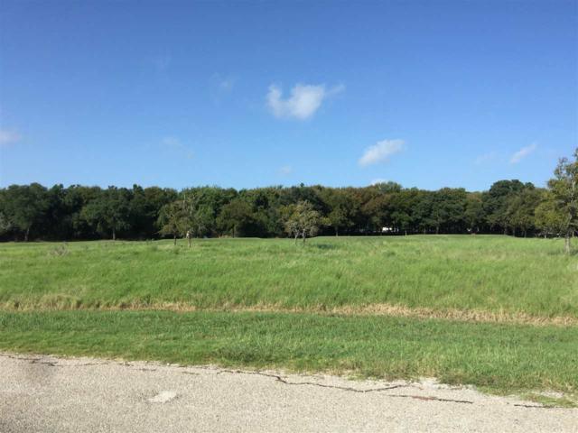 17017 Trailwood Dr, Whitney, TX 76692 (MLS #167318) :: Magnolia Realty