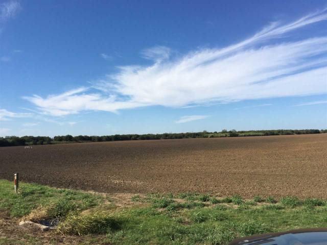 State Hwy 171, Malone, TX 76660 (MLS #167358) :: Magnolia Realty