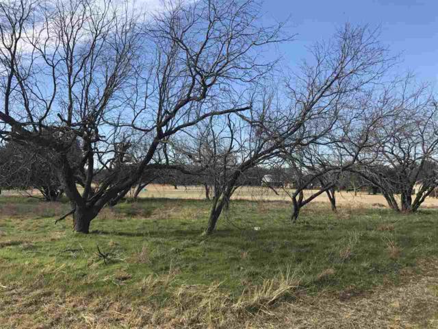 17162 Trailwood Dr, Whitney, TX 76692 (MLS #169411) :: Magnolia Realty