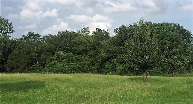 Wood Ave, Waco, TX 76711 (MLS #169804) :: Magnolia Realty