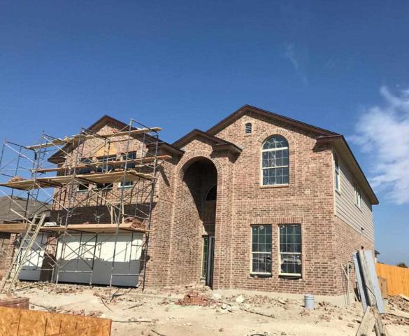 2816 Jackal Drive, Lorena, TX 76655 (MLS #172626) :: Keller Williams Realty