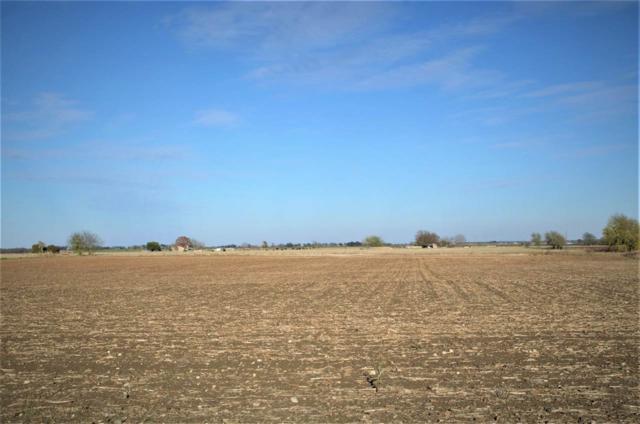 Farmview Pkwy, Mcgregor, TX 76657 (MLS #173145) :: Magnolia Realty