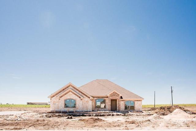 160 Ralynn Drive, Lorena, TX 76655 (MLS #173343) :: Magnolia Realty