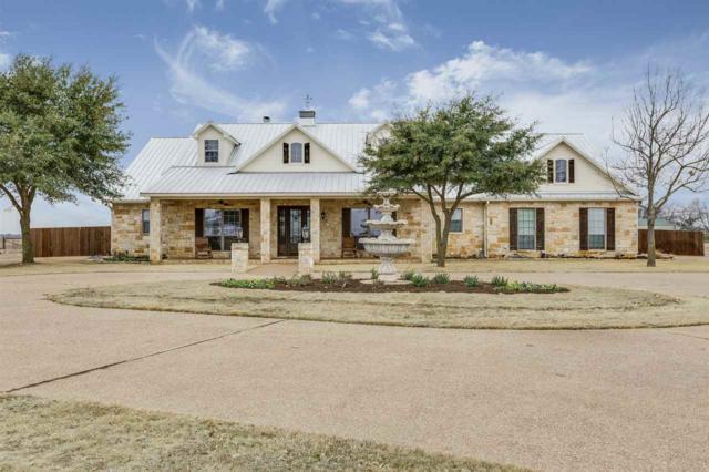 3449 N Lone Star Parkway, Mcgregor, TX 76657 (MLS #173519) :: Magnolia Realty