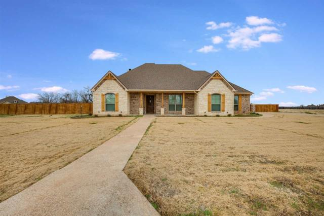 67 Independence Trail, Waco, TX 76708 (MLS #173602) :: Magnolia Realty