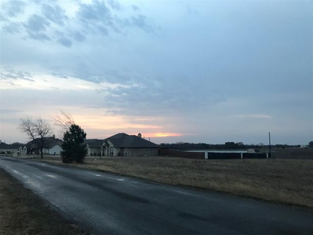 tba Appaloosa Ln, China Spring, TX 76633 (MLS #173740) :: Magnolia Realty