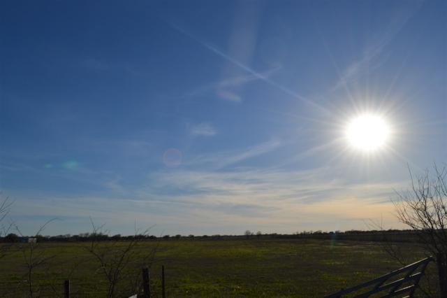 2205 Cotton Belt Parkway, Mcgregor, TX 76657 (MLS #173794) :: Magnolia Realty