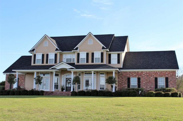 431 Copperhead Creek, Bruceville-Eddy, TX 76630 (MLS #174143) :: A.G. Real Estate & Associates