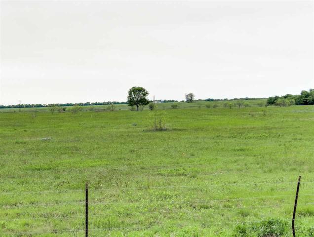 Peacock Lane, Mcgregor, TX 76657 (MLS #174450) :: Magnolia Realty