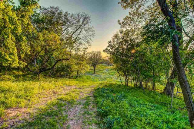 Beverly Cox Drive, Waco, TX 76705 (MLS #174560) :: Magnolia Realty