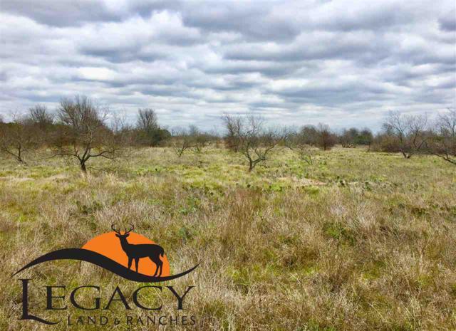 Hwy 36, Gatesville, TX 76528 (MLS #174675) :: Magnolia Realty
