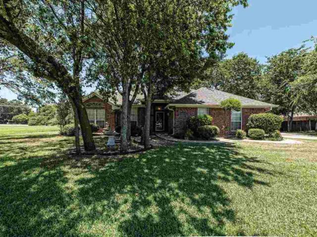 5421 Tracey Dr, Waco, TX 76708 (MLS #174681) :: Magnolia Realty