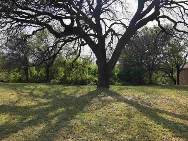 15031 Badger Ranch Blvd, Waco, TX 76712 (MLS #174779) :: A.G. Real Estate & Associates