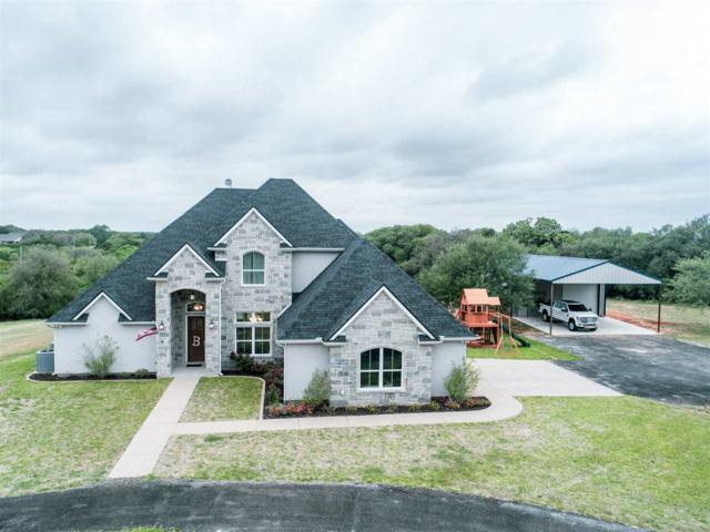 95 Hali Brooke, China Spring, TX 76633 (MLS #174856) :: Magnolia Realty