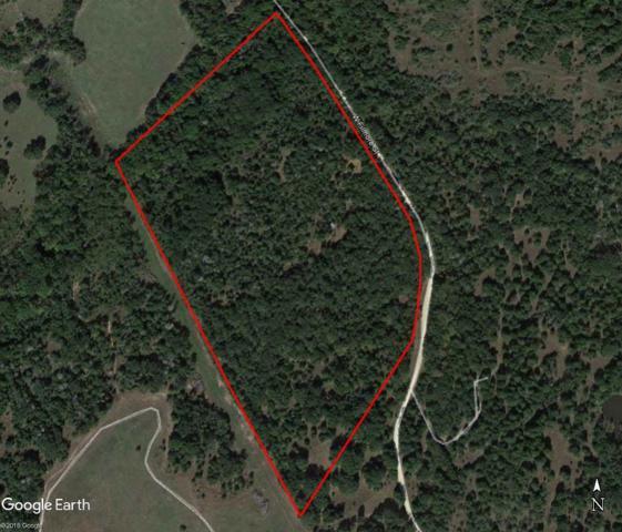 35.38 Acres Lcr 701, Kosse, TX 76653 (MLS #175026) :: Magnolia Realty