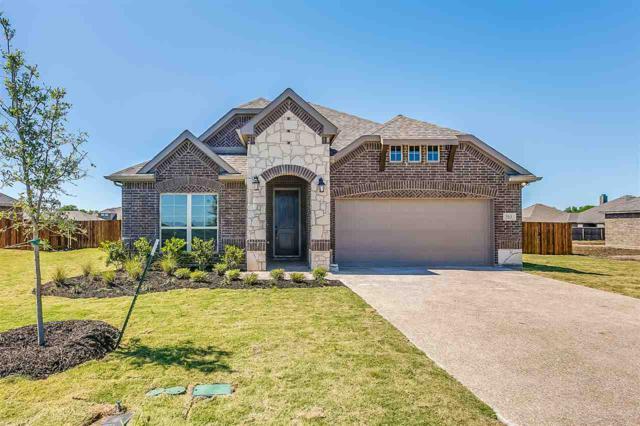 513 Leaning Way, Mcgregor, TX 76657 (MLS #175057) :: Magnolia Realty