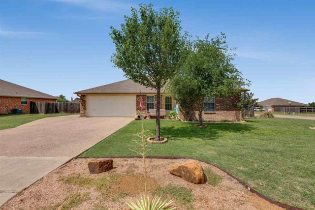 10801 Lilry Dr, Waco, TX 76708 (MLS #175188) :: A.G. Real Estate & Associates