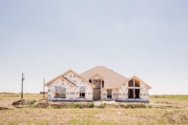 178 Ralynn Drive, Lorena, TX 76655 (MLS #180634) :: Magnolia Realty