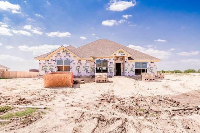 511 Aerl Road, Lorena, TX 76655 (MLS #196924) :: A.G. Real Estate & Associates