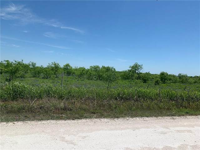 TBD Hcr 3306 Road, PENELOPE, TX 76676 (#200365) :: Zina & Co. Real Estate
