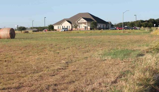 2500 Ambassador, Waco, TX 76712 (MLS #167938) :: Magnolia Realty