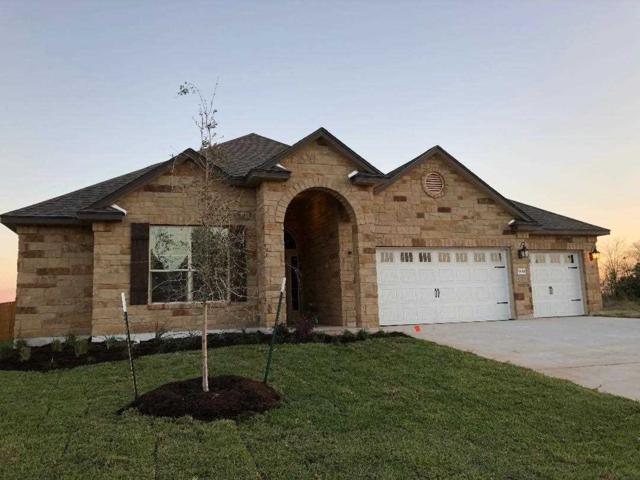 5800 Beckon Falls, Waco, TX 76708 (MLS #172711) :: Magnolia Realty
