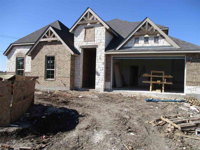 10809 Francis Dr, Waco, TX 76712 (MLS #172776) :: Magnolia Realty
