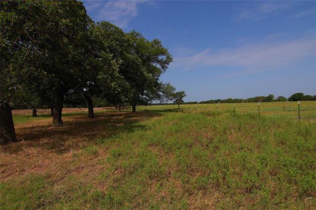 440 Hcr 2203, Aquilla, TX 76622 (MLS #173748) :: Magnolia Realty