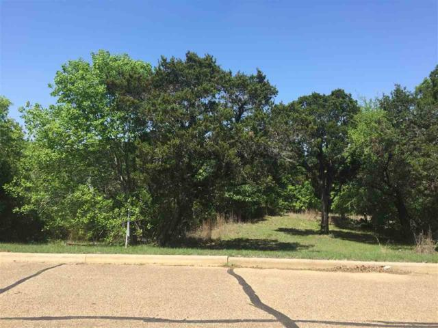 175+/- Acres Century Oaks Drive, China Spring, TX 76633 (MLS #174487) :: Magnolia Realty