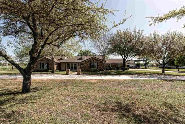 299 Peevey Lane, Robinson, TX 76706 (MLS #174497) :: Magnolia Realty