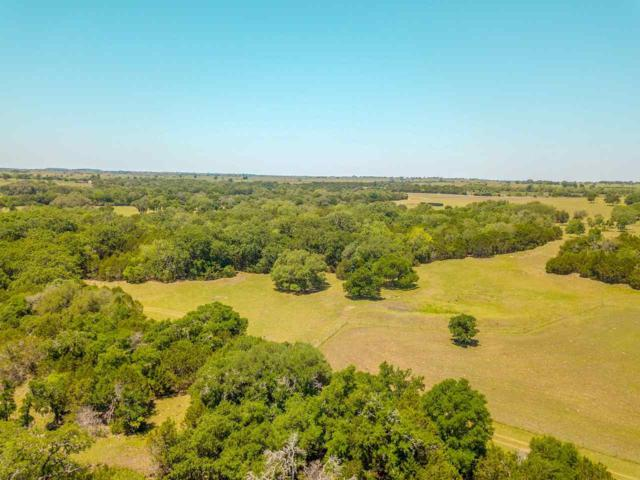 445 Cr 133, Gatesville, TX 76528 (MLS #174884) :: Magnolia Realty