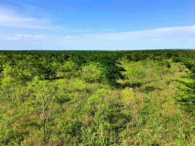 270 County Line Road, Axtell, TX 76624 (MLS #175282) :: Magnolia Realty
